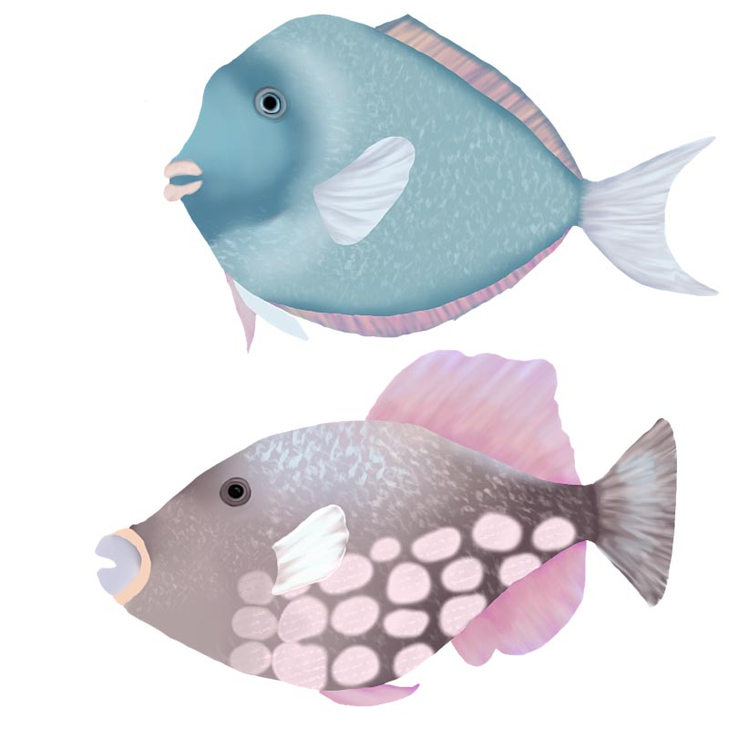 Big fish TN